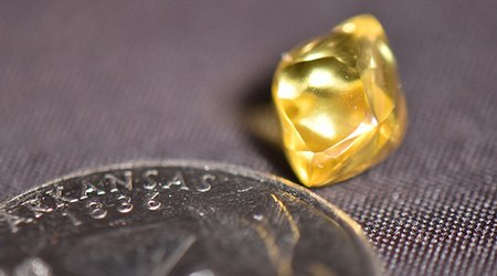 Fayetteville Man Scores 4.49-Carat Canary Yellow Diamond at Arkansas Park